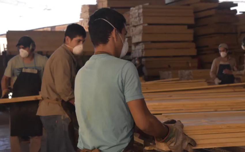 Misiones define cómo se aplicará el plan del primer empleo joven
